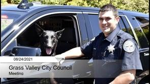 City Council Live Stream